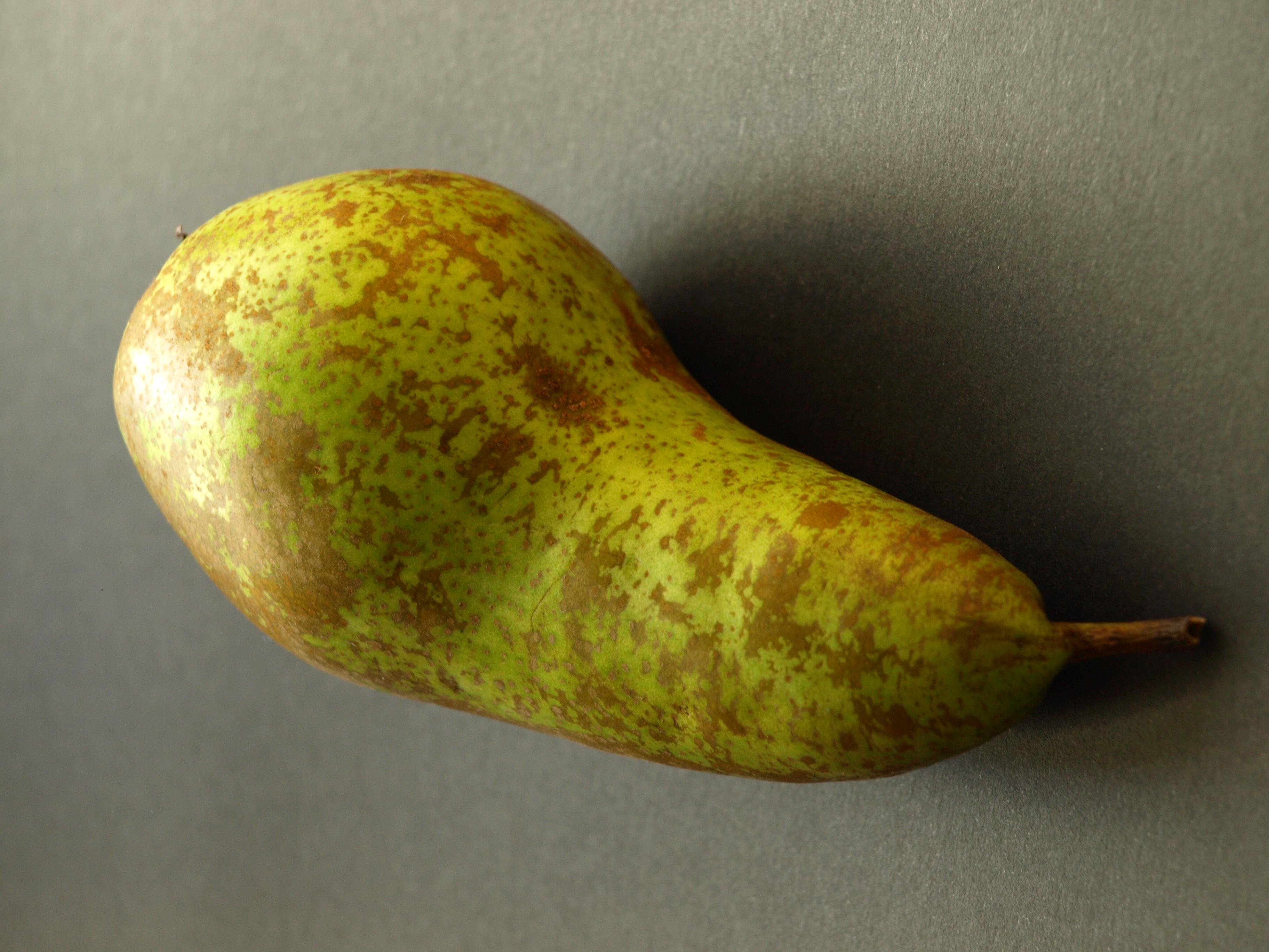 Lauwwarme witlof-peer salade