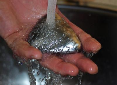 Kettingsmeer verwijderen van handen