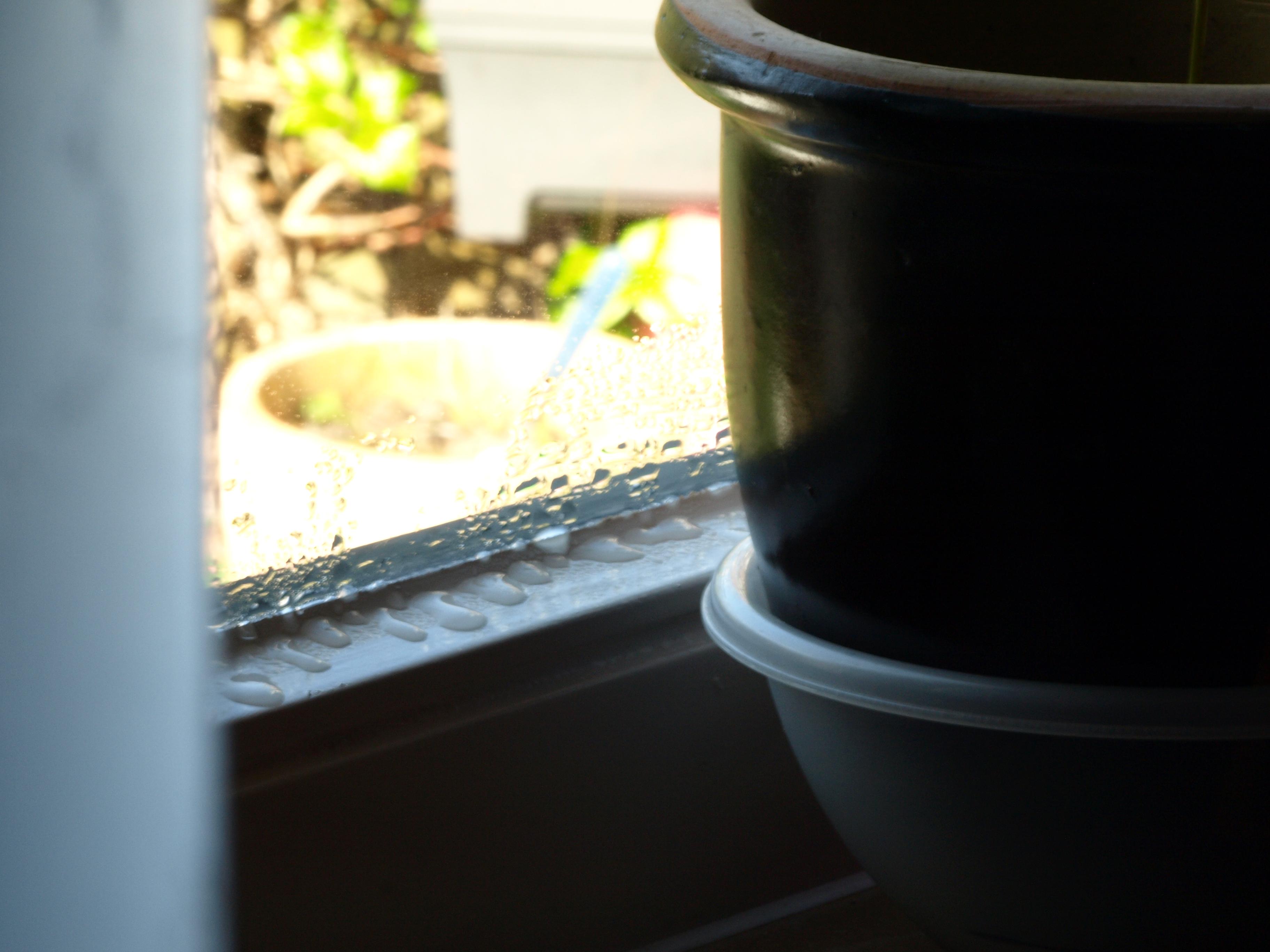 Hoe een te hoge luchtvochtigheid in uw woning voorkomen