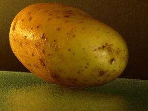 Hoe aardappelen koken?