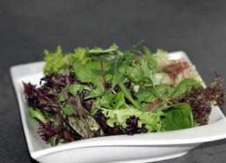 Salade Salade is niet alleen rauwkost Het kan een volwaardige maaltijd zijn, denk hier bijvoorbeeld aan aardappelsalade. Er bestaan gemengde salades met fruit, vlees of vis. Ze zijn perfect geschikt bij een barbecue, picknick of als lunch op werk. Wij hebben hier onze favoriete recepten voor heerlijke salades en salade dressings voor u op een rij gezet. Wat vindt u van een zelfgemaakte aioli – een mediterrane knoflooksaus? Bij het combineren van salades is uw eigen fantasie bijna geen grenzen gezet! Salades is meer dan konijnenvoer! Hoe voorkom ik dat slasaus of dressing verwatert?