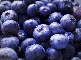 Pannenkoek met blauwebessen