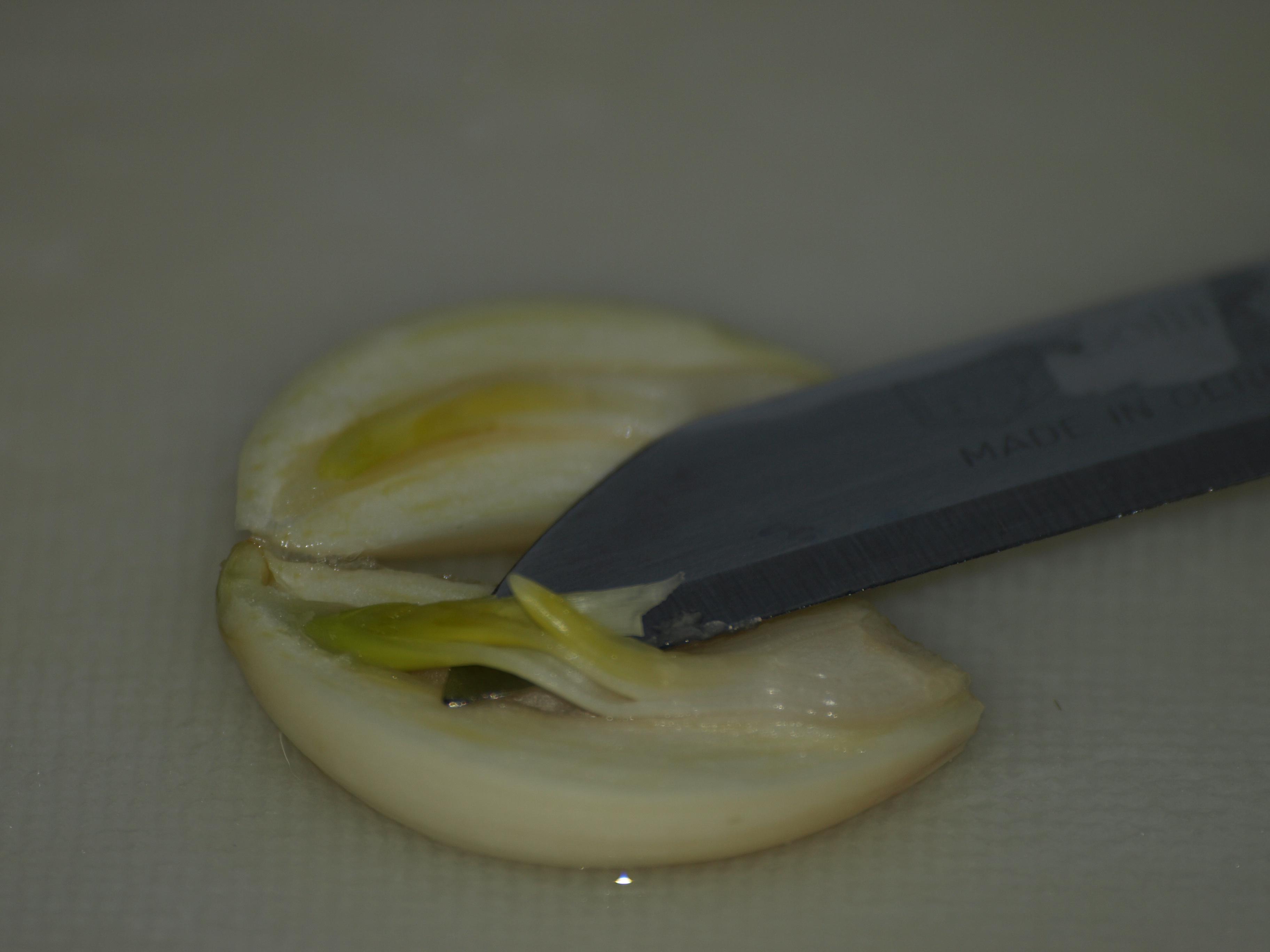 Aioli (mediterrane knoflooksaus) zelf maken
