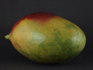 Mango's zijn rijk aan vitaminen, mineralen en anti-oxidanten en bevatten weinig eiwitten, vetten en calorieën