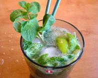 Cocktail Mojito - lekker fris