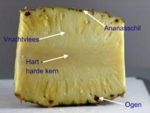 De kleur van het vruchtvlees is lichtgeel tot geel en de smaak is zoet tot zoetzuur
