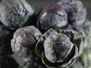 Het lijkt dat paarse spruiten niet echt nieuw zijn, het zijn eerder vergeten groenten.